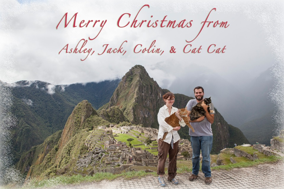 Peru_Cat Xmas