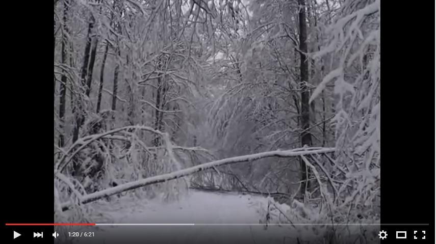 screenshot-www.youtube.com 2015-12-15 13-18-16